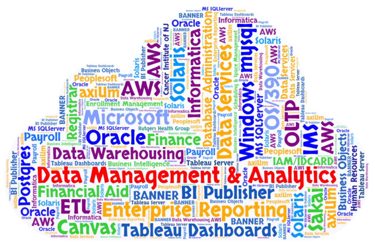 Data Management & Analytics | Enterprise Application Services
